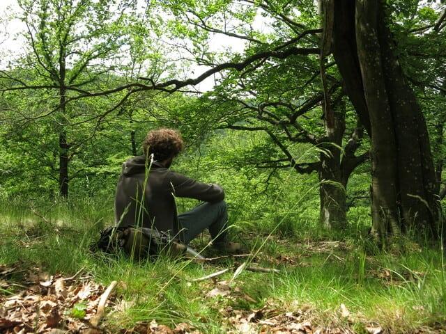 natur-erkunden.at - ruhige Naturerlebnisse