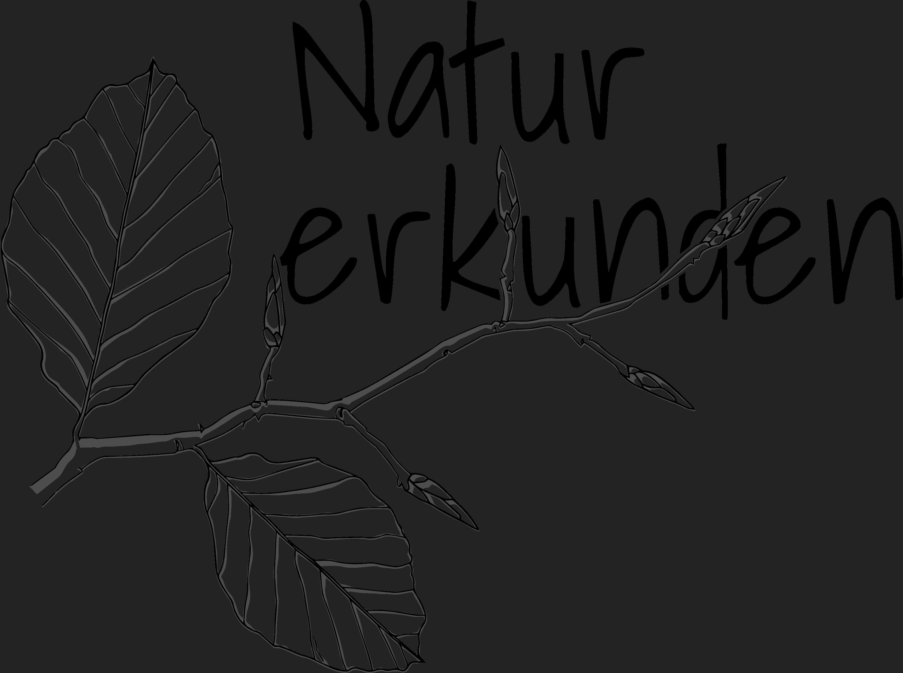 Natur Erkunden