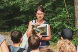 natur-erkunden.at - Schulworkshops